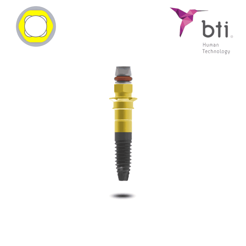 BTI Interna Standard Plus Implantat